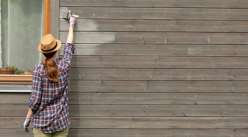 Image of woman painting her house.