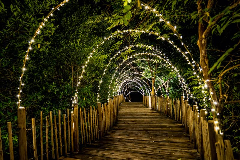 Archway of white lights