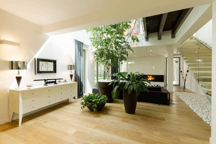 A spacious, open area with skylights and plants.
