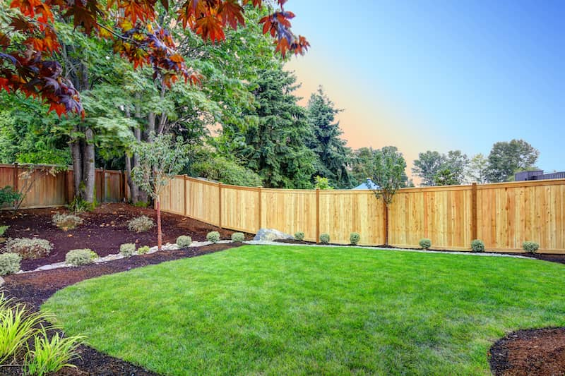 new fencing in landscaped backyard