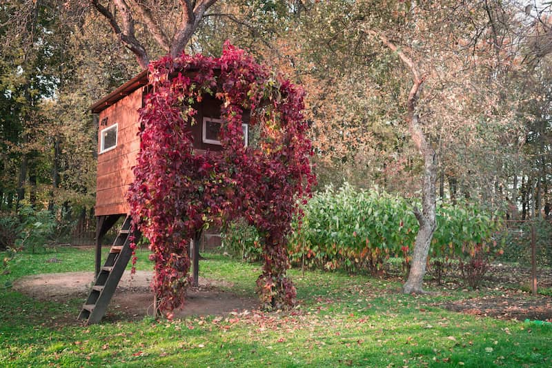 backyard treehouse covered in pink flowers
