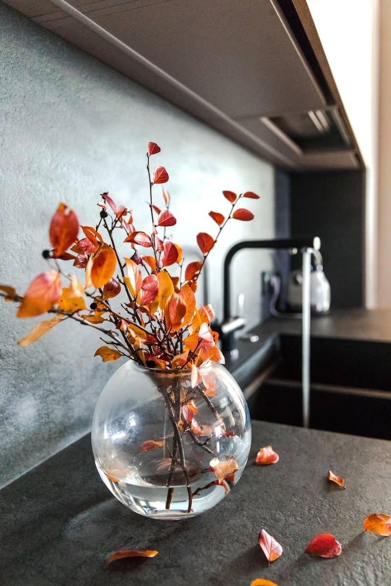Branches in a vase on kitchen counter.
