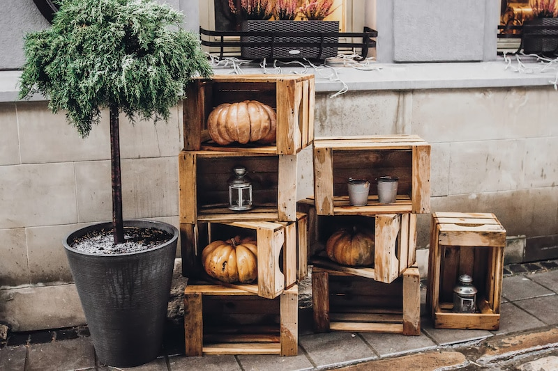 Wooden boxes full of pumpkins.