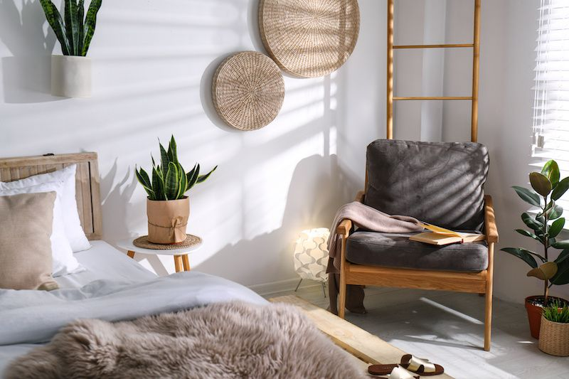modern bedroom with a snake plant and chair in the corner