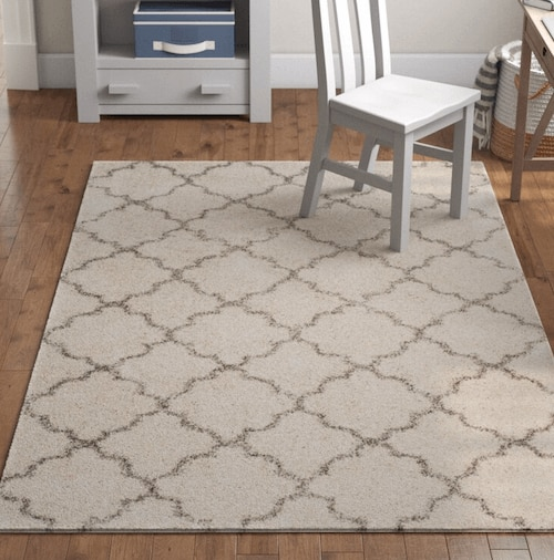 Patterned rug from Wayfair.