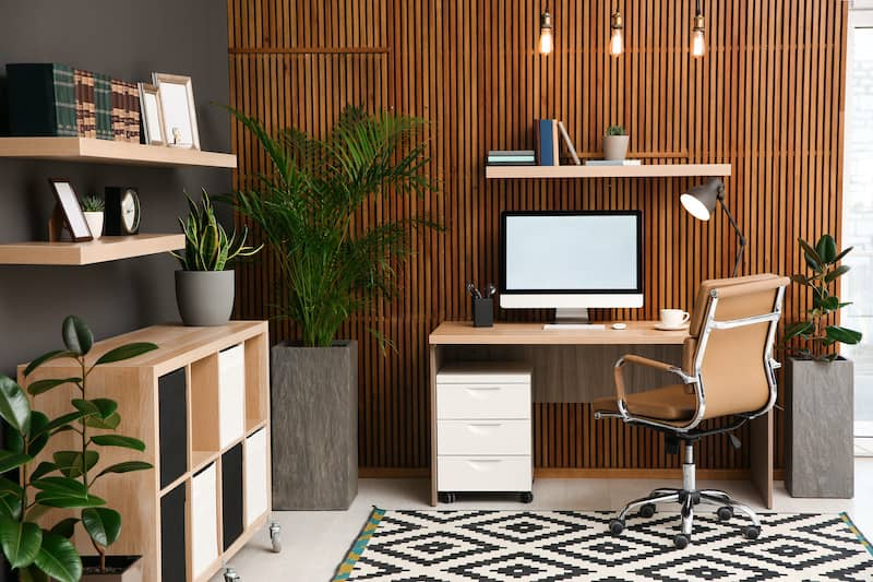 home office shed with fiddle leaf fig