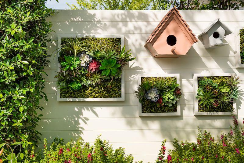 vertical garden on shiplap wall