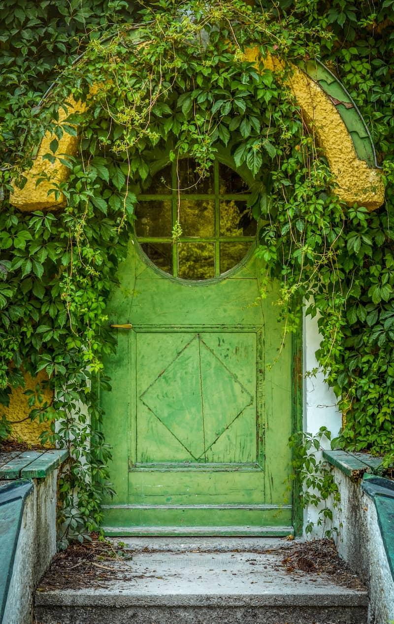 green cottage front door with ivy surrounding doorway