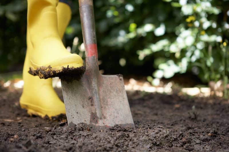 Digging Soil For Rain Garden Preparation