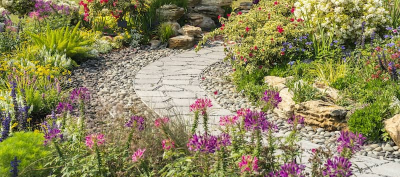 Vibrant Flowers In Rock Garden With Winding Stone Path