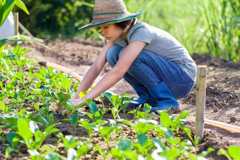 Young Woman Planting Vegetables in Garden