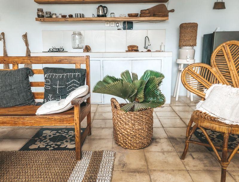 Vintage furniture and plants.