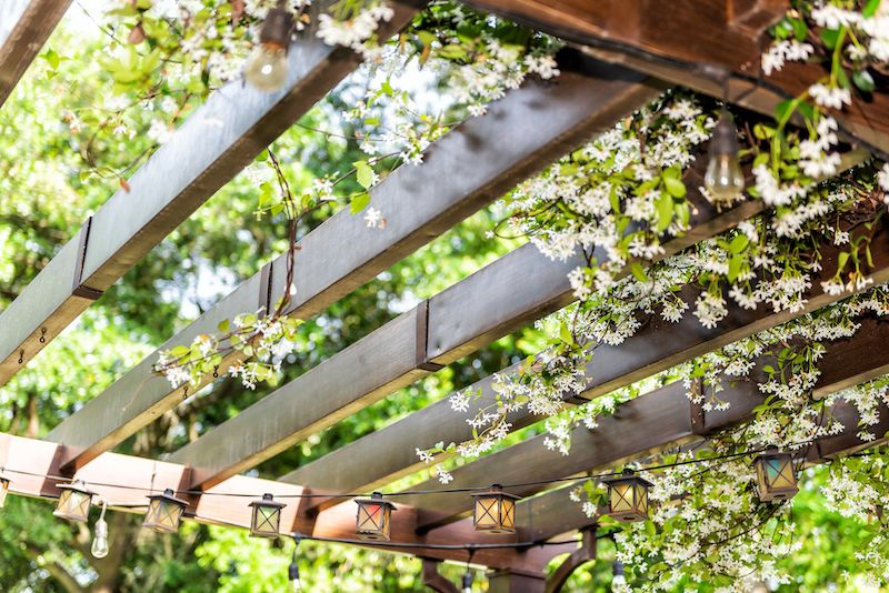 Pergola canopy with flowers.